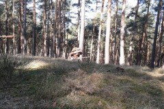 2012-03-24-10_43_19